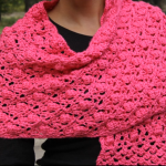 Acorn And Raspberry Stitch Shawl