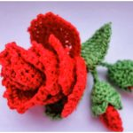Crochet Rose And Flower Buds