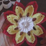 Crochet Flower 3D