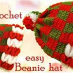 3D Crochet Beanie Hat
