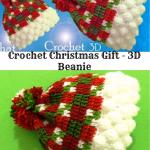 Crochet Christmas Gift – 3D Beanie