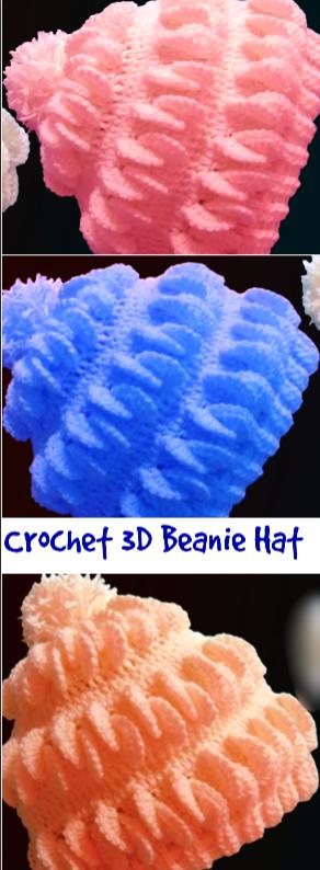 Crochet 3d beanie hat