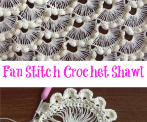 Fan Stitch Crochet Shawl