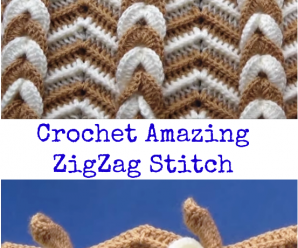 Crochet Amazing ZigZag Stitch