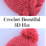 Crochet Beautiful 3 D Hat