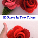 3D Roses In Two Colors
