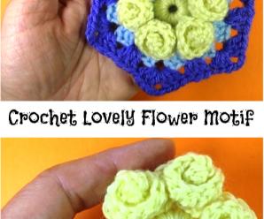 Crochet Lovely Flower Motif