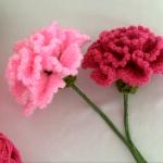 How To Crochet Carnation Flower