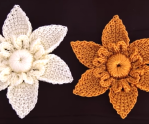 Crochet 3D Star Flower