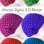 Crochet Stylish 3 D Beanie