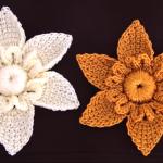 Crochet 3D Star Flower